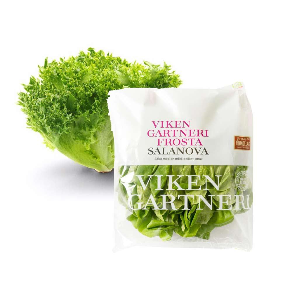 Friske salater fra Viken Gartneri